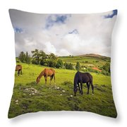 Three Horses Grazing In Field Throw Pillow
