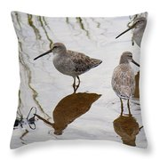 Three Long Billed Dowitchers Throw Pillow