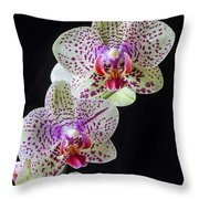 Three Orchids Throw Pillow