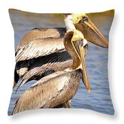 Three Pelicans On A Stump Throw Pillow