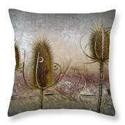 Three Prickly Teasels Throw Pillow
