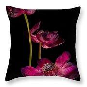 Three Purple Anemones Throw Pillow