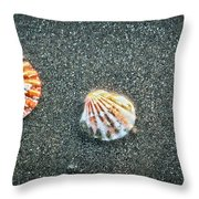 Three Sea Shells Throw Pillow