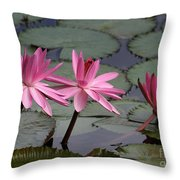 Three Sweet Pink Water Lilies Throw Pillow