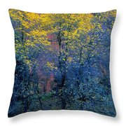 Three Thin Autumnal Trees In Front Of Throw Pillow