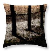 Three Tree Trunks Throw Pillow