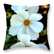 Three White Flowers Throw Pillow