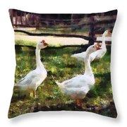 Three White Geese Throw Pillow