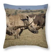 Three White Rhinos Line Up In Solio Throw Pillow