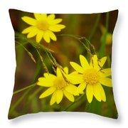 Three Yellow Amigos  Throw Pillow