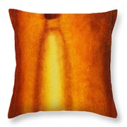 Through Frosted Glass Throw Pillow