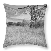 Through The Tall Grasses Throw Pillow