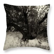 Through The Wall Bw Throw Pillow
