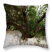 Through The Wall Throw Pillow