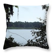 Through The Woods Throw Pillow
