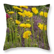Tick Seed 2229 Throw Pillow