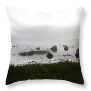 Tide Sequence - High Throw Pillow