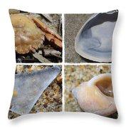 Tideline Treasures Throw Pillow by Luke Moore