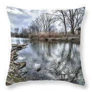 Tifft Nature Preserve Throw Pillow