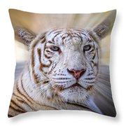 Tiger Blur Throw Pillow