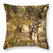 Tiger In The Undergrowth At Ranthambore Throw Pillow