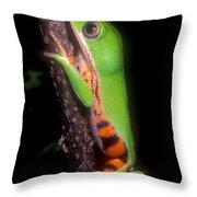 Tiger Leg Monkey Frog Throw Pillow