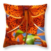 Tiger Lily Close Up Throw Pillow