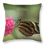 Tiger Longwing On Flower Throw Pillow