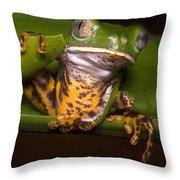 Tiger-stripe Monkey Frog Throw Pillow