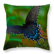 Tiger Swallowtail Butterfly Female Throw Pillow