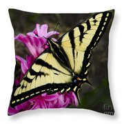 Tiger Swallowtail On Pink Hyacinth Throw Pillow