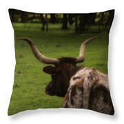 Till The Cow Comes Home Throw Pillow by Kelly Rader