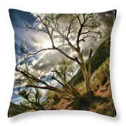 Tilted Trees Throw Pillow