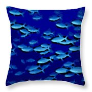 Time For School Throw Pillow