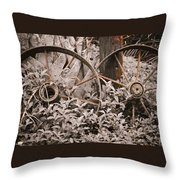 Time Forgotten Throw Pillow