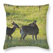 Time To Be On Your Own Son 5981 Throw Pillow