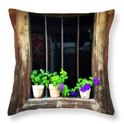 Time Worn Window With Bright Flowers Throw Pillow