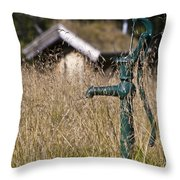 Times Long Past Throw Pillow