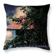 Tin Roof And Vines Throw Pillow
