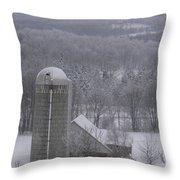 Tinted Winter Throw Pillow