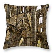Tintern Abbey 10 Throw Pillow