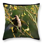 Tiny Bird In Wild Lettuce  Throw Pillow
