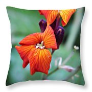 Tiny Floral Sparks Throw Pillow