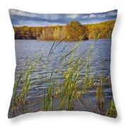 Tiny Island On Hall Lake No 0086 Throw Pillow