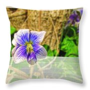 Tiny Violet   Blank Greeting Card Throw Pillow