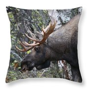 Tired Eyes Throw Pillow
