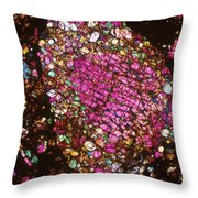 Tlm Of Chondrite Throw Pillow