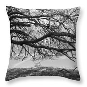 To Lie Here With You Would Be Heaven Throw Pillow