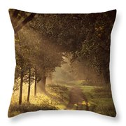 To The Shire Throw Pillow
