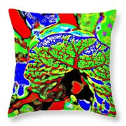 Toad Hall Throw Pillow